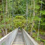 Waiau River bridge