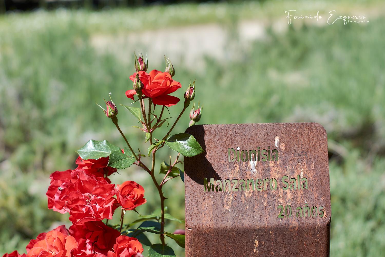 Glorieta de las 13 rosas