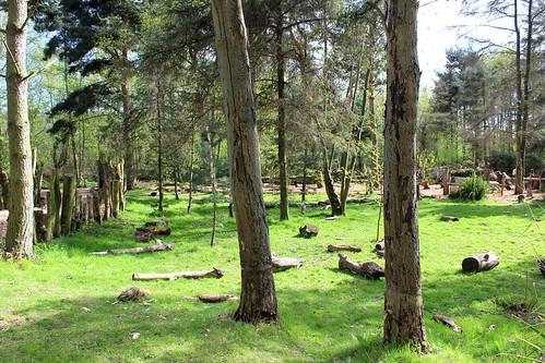Wildfowl Park (1)