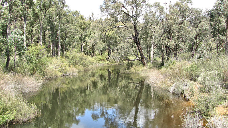 Day 5: Canning River