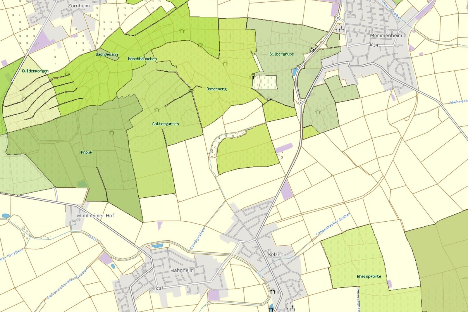 Weinlagen um Selzen (Quelle: Landwirtschaftskammer Rheinland-Pfalz)