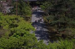 Nanzen-ji, Kyoto, April 2016