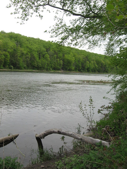 'The Mighty Delaware'