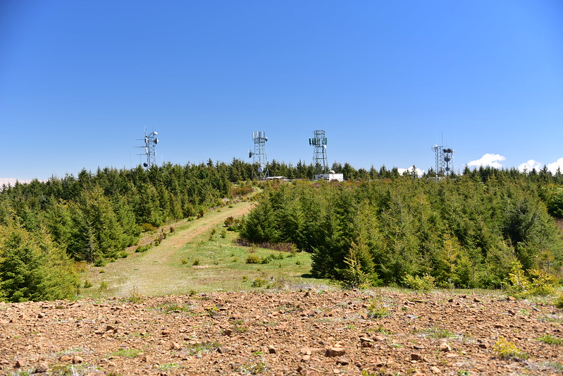 Mt. Hebo Hike