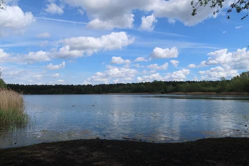Blick auf den Niedringhaussee von Liegebank