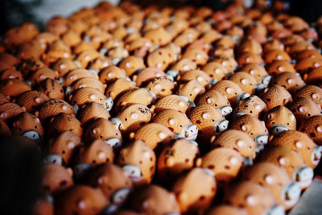 イノシシかいぎ (boar convention)