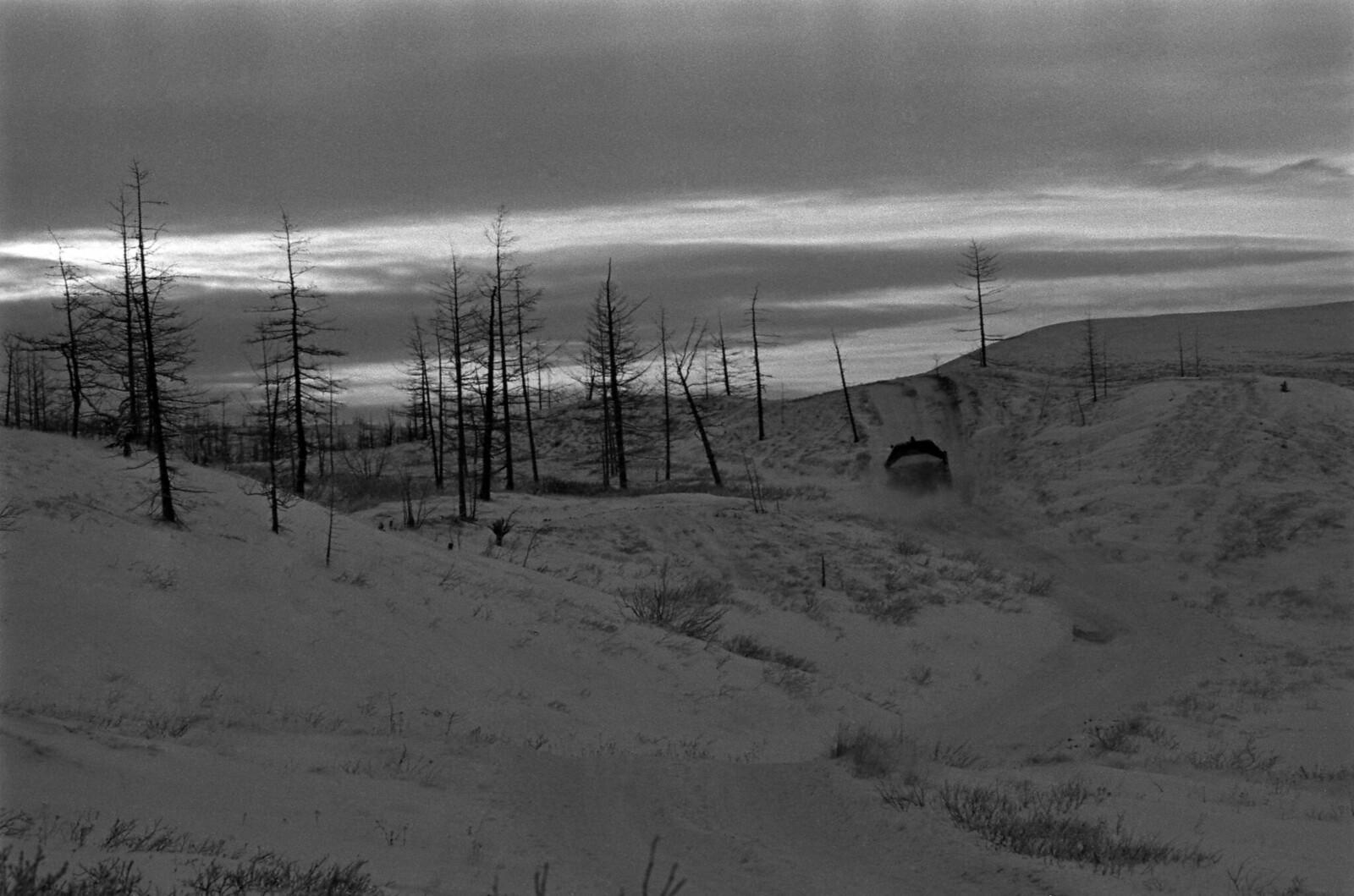 1979. Полуостров Таймыр, Тундра