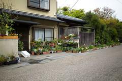 Nice garden near Gio-ji, Arashiyama, April 2016