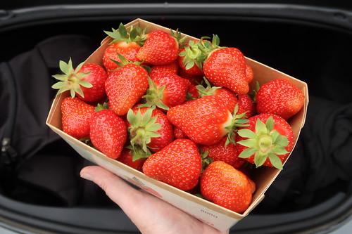 800g Schale Erdbeeren von Böckmann