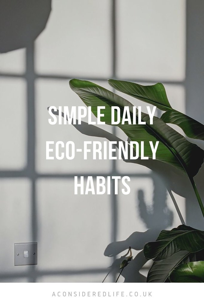 Simple Daily Eco-Friendly Habits
