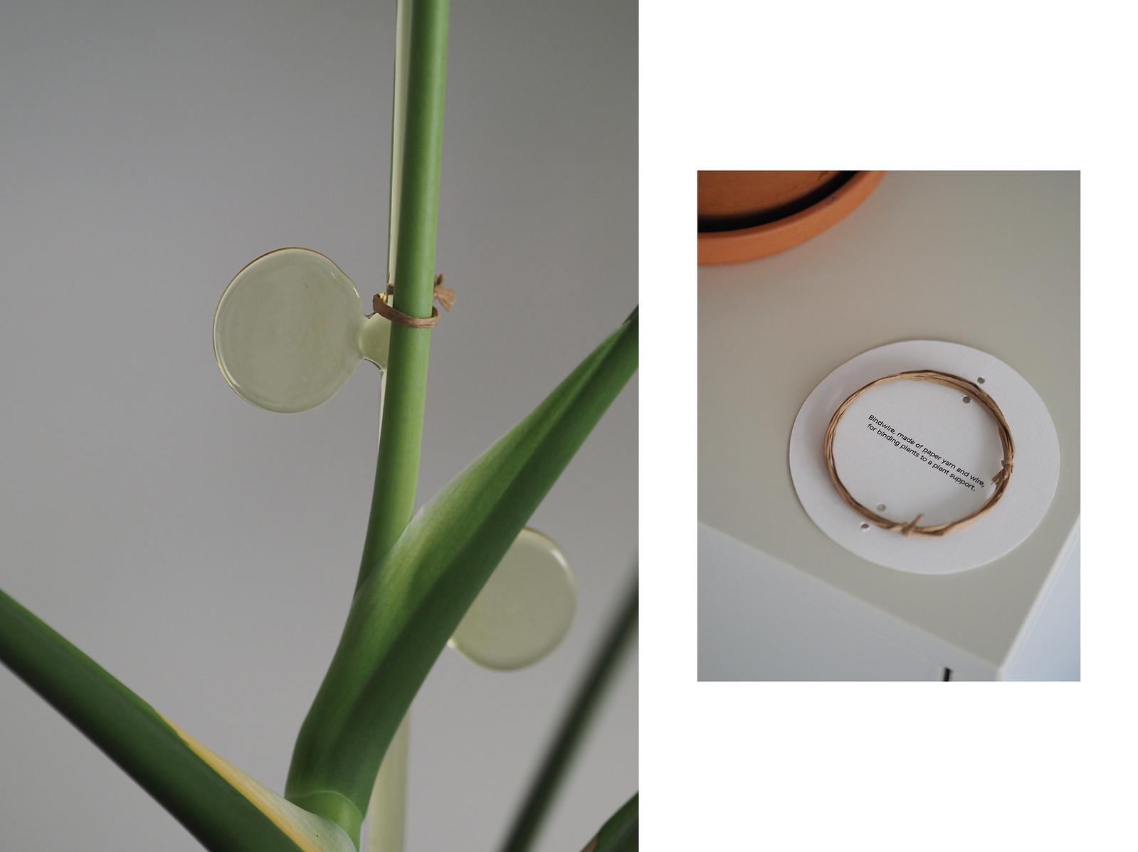 Iina Kettunen lasinen kasvituki Artek