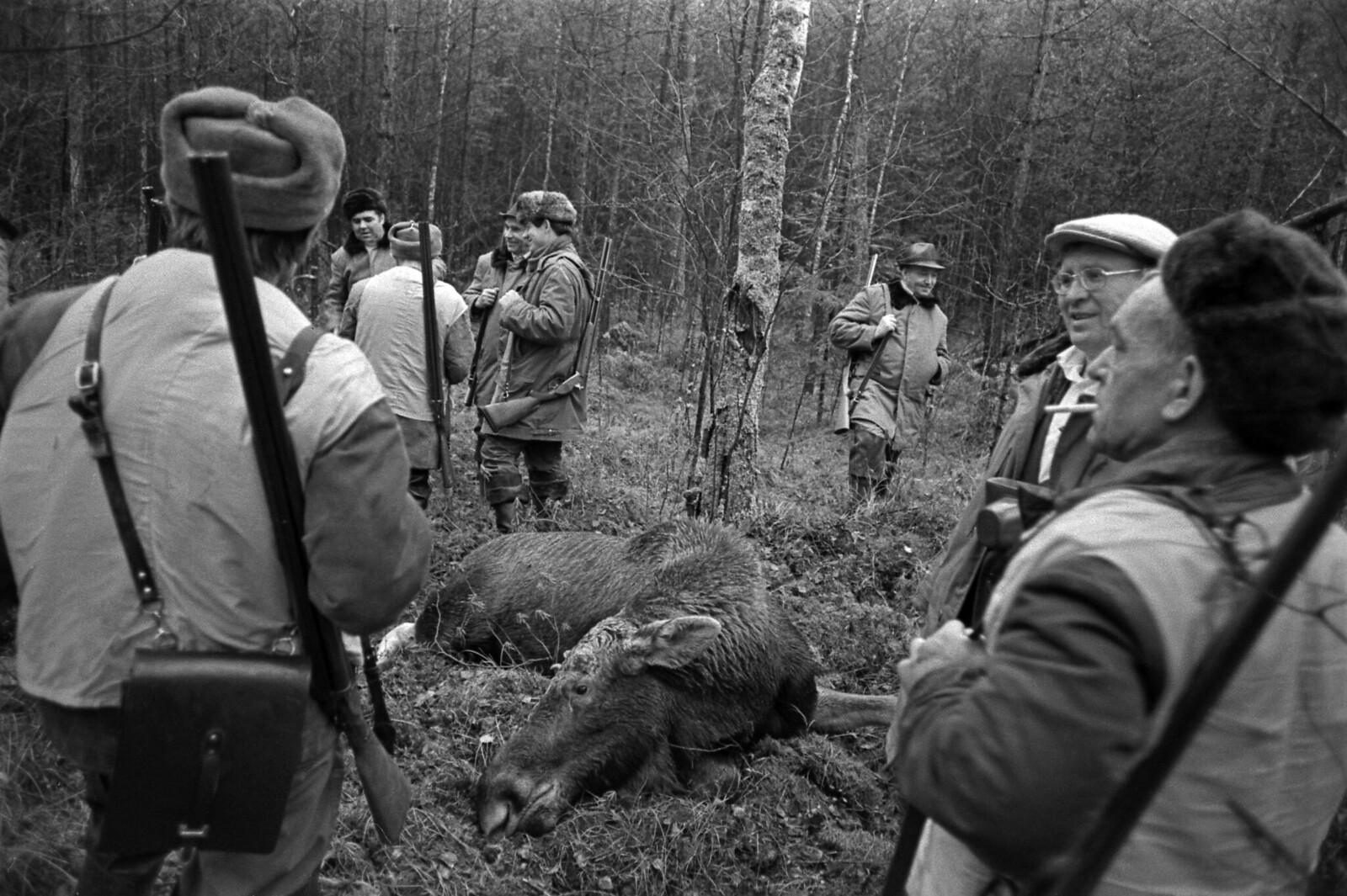 1977. «... Убили ... И счастливы», Завидово
