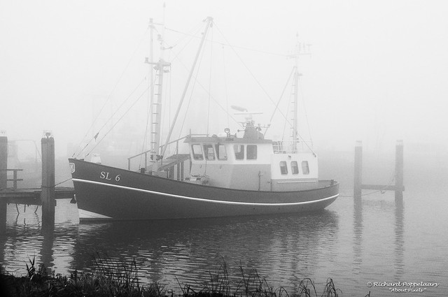 Delta harbor with fishing boats in the fog (Stellendam/NL)