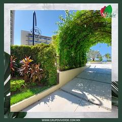 Arco de flores Hotel Secrets
