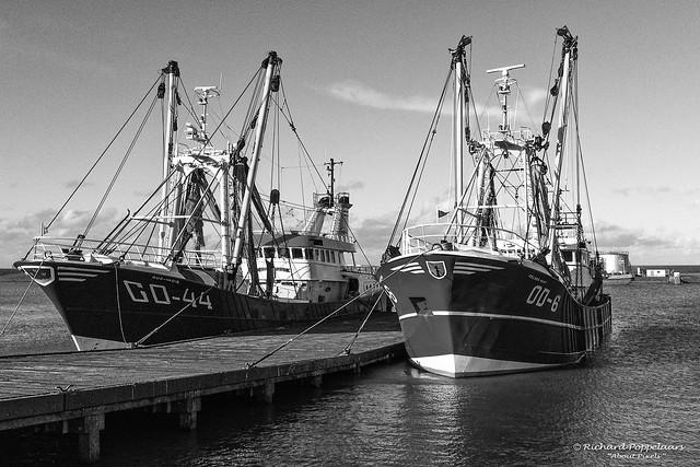 Fishing vessels in the Deltahaven (Stellendam/NL)