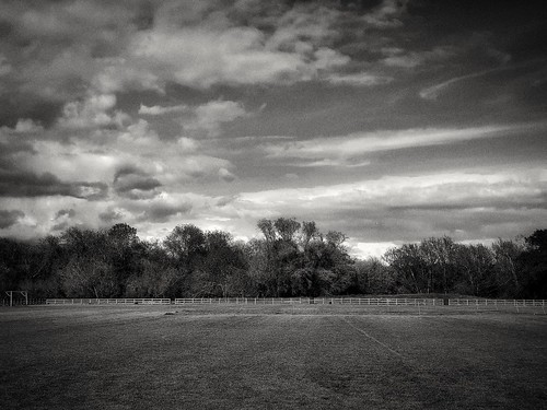 field landscape nature trees skies bw mono monochrome film android app hypocam
