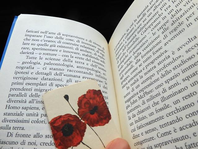 Parole e fiori