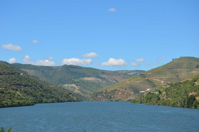 Landscapes of Douro XXIII