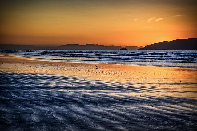Waikanae Beach Golden Hour