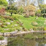 Garden at Avenham Park