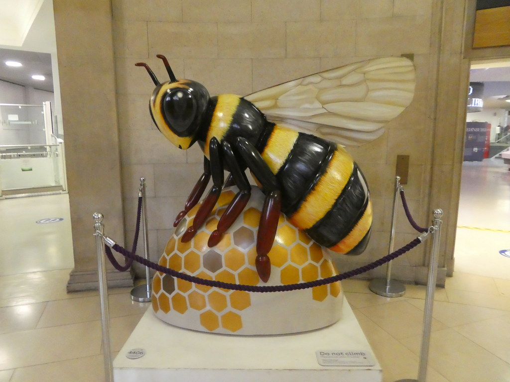 The Manchester Bee, Central Library