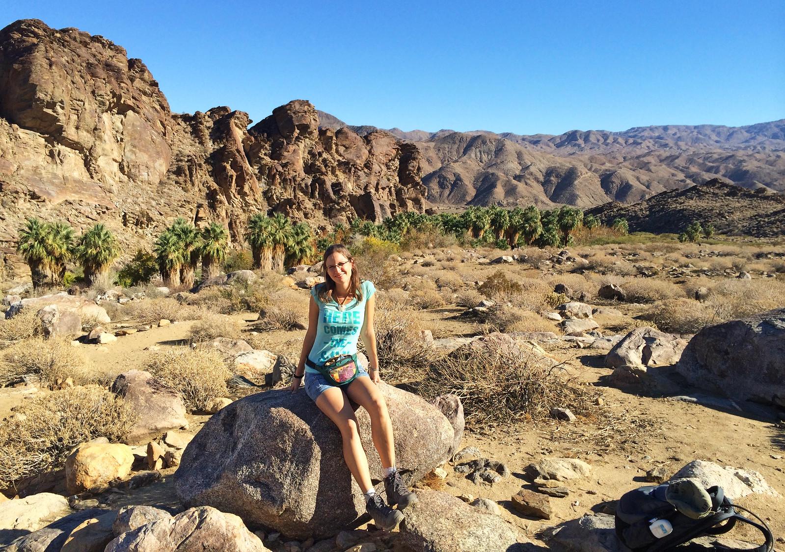 Indian Canyons, California, USA
