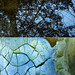 An abstract diptych of a wavery reflection of a tree in a dark pool in the Pacific Spirit Forest combined with cracked and weathered paint on a rusty dumpster