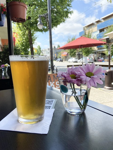 ME:  Hey Little Brown Friend! Did you hear the news?  The ban on indoor seating at bars & restaurants is set to expire after the long weekend.  LBF:  Ehh! As long as the great weather continues I plan to keep sitting outside.  ☀️☀️☀️☀️