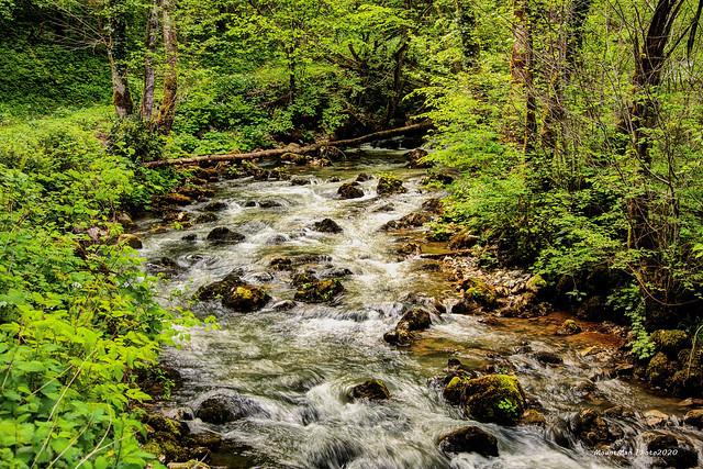 Potok Gerovčica nedaleko pilane