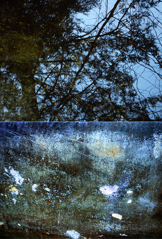 An abstract diptych of a wavery reflection of a tree in a dark pool in the Pacific Spirit Forest combined with cracked and weathered paint on a boat