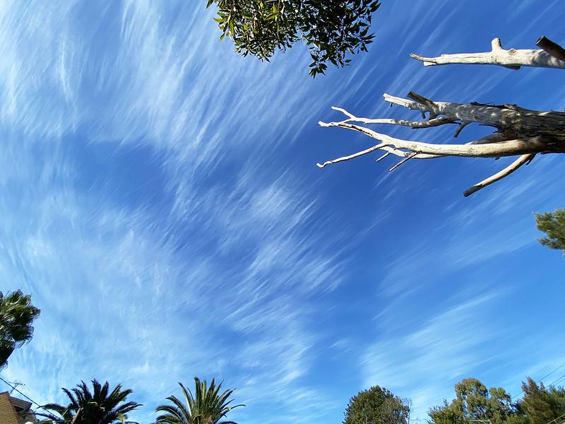 Cirrus clouds over Sydney