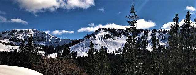 Sierra Snowpack