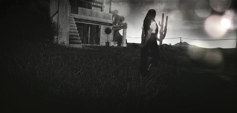 Elders Hollow  |   s u r r e n d e r