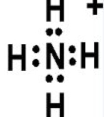 NH4+ Lewis Structure