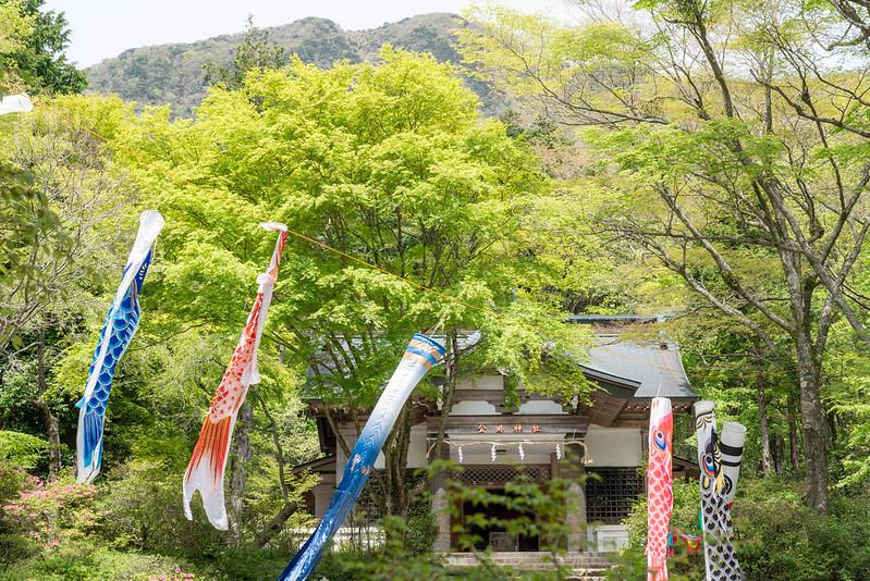 金時神社から金時山