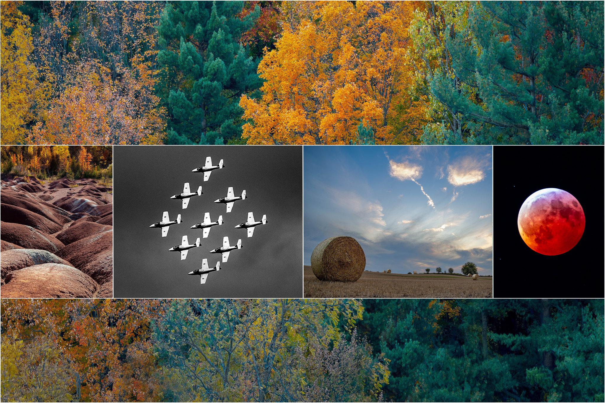 Collage_Fav_2019_V3
