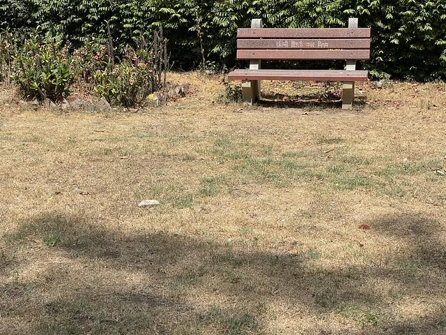 City Hangout - Happy Bench, Friendship Park