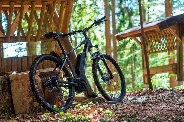 Dirty Biking