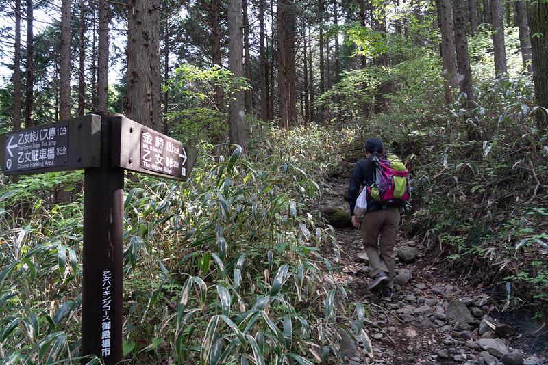 乙女峠登山