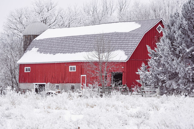 Red rustic barn in winter, covered in rime ice - taken in Minnesota