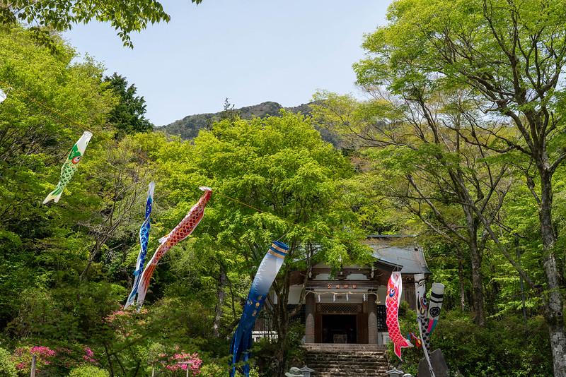 金時神社から見える金時山