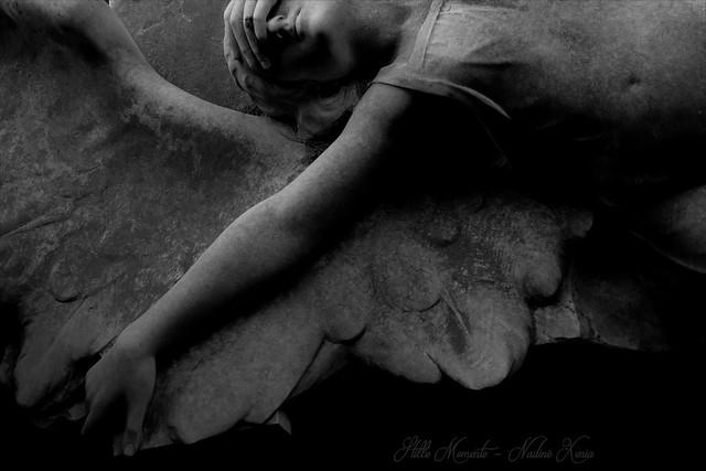 Love will tear us apart....