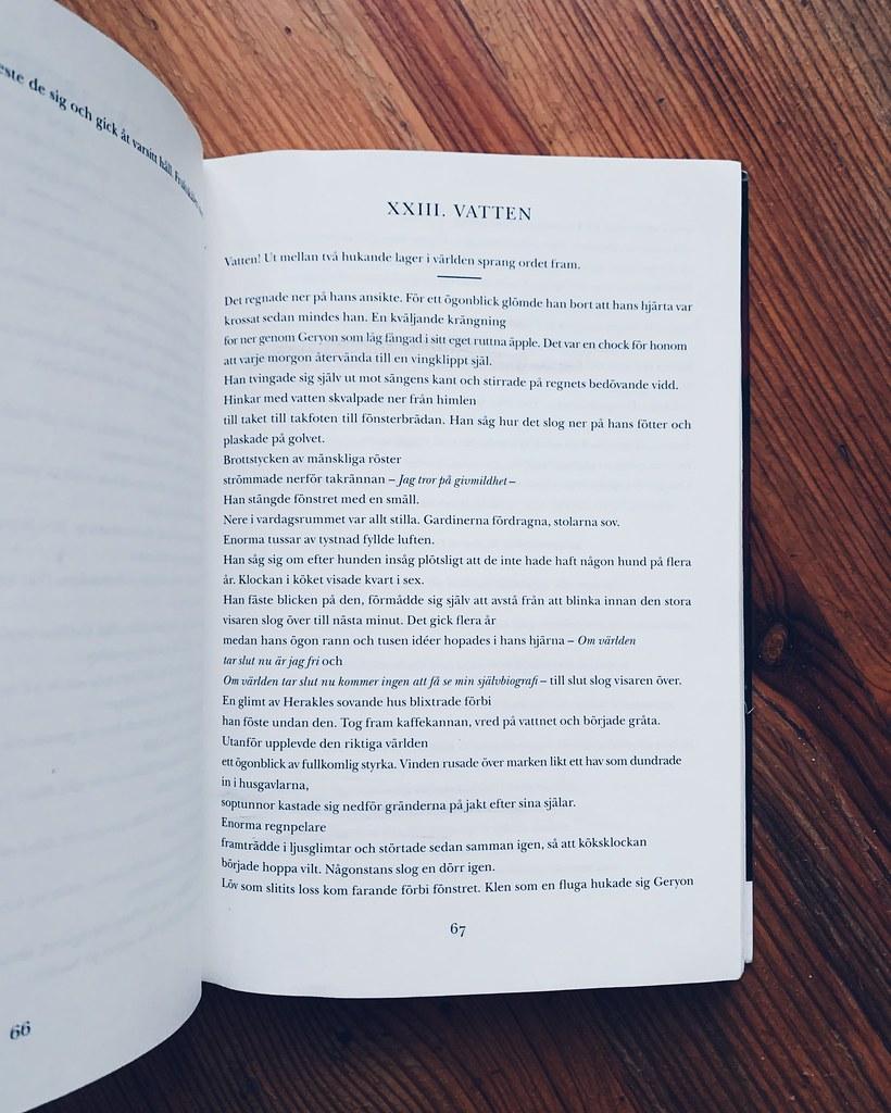 Röd självbiografi - Anne Carson