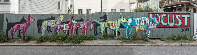 Skeletal Animals