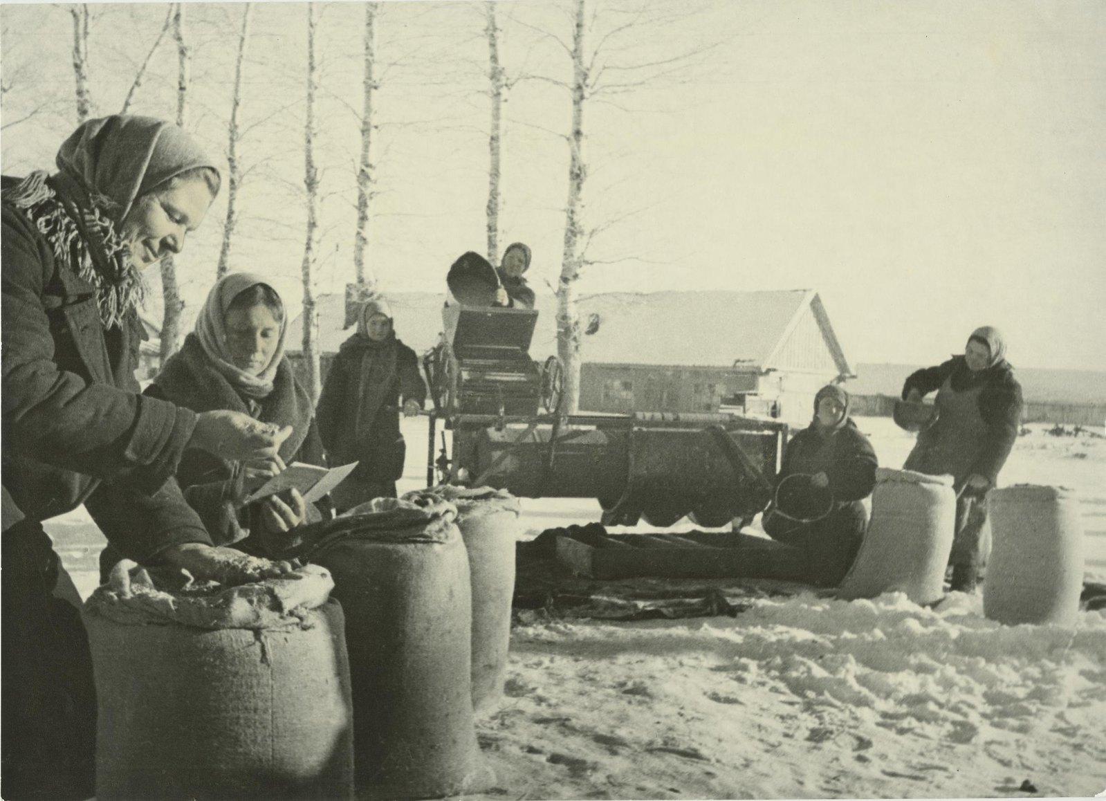 1941. Сельское хозяйство в годы войны. Сортировка семян