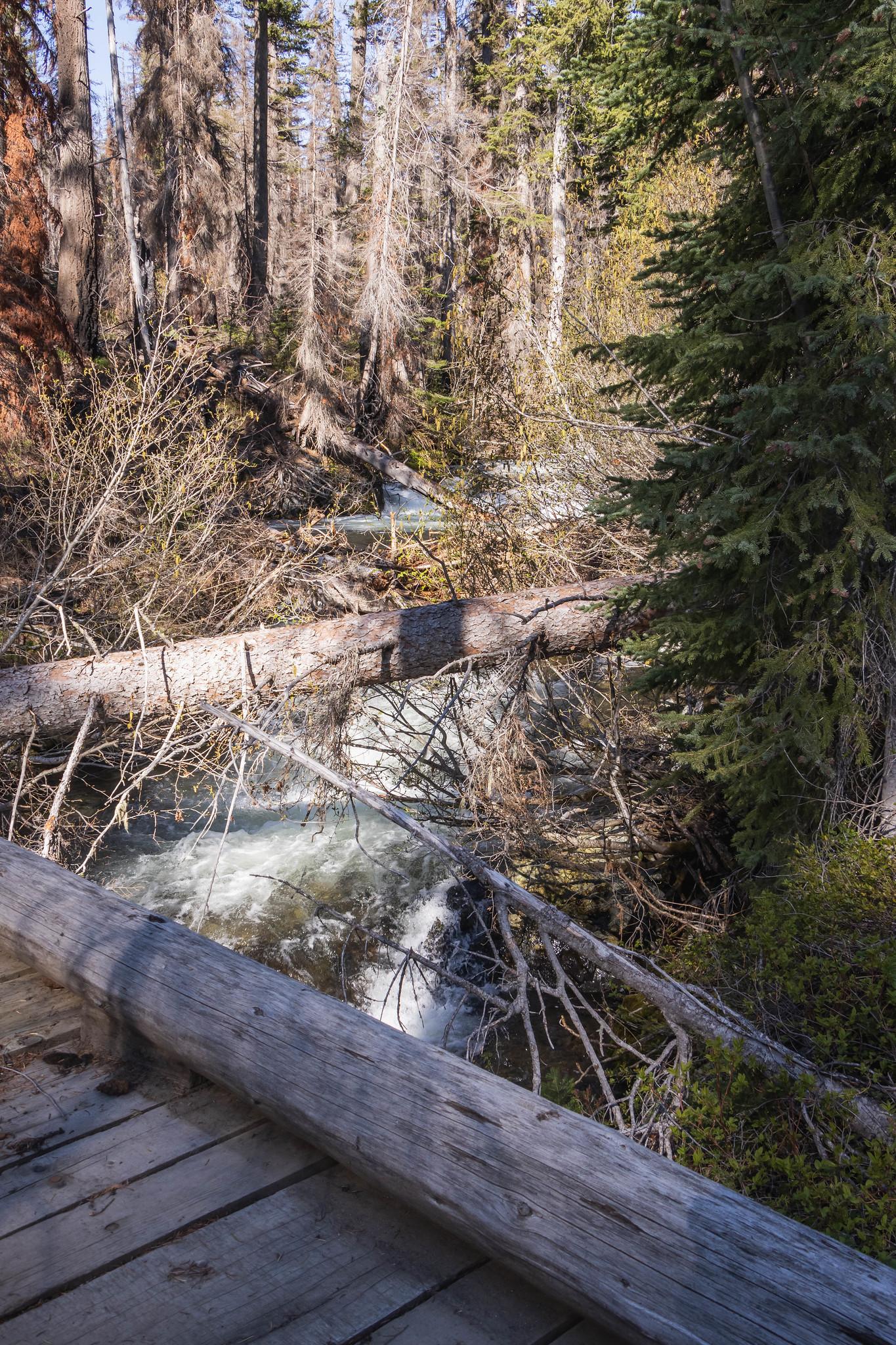 Bridge over South Creek