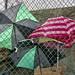 Fenced umbrellas