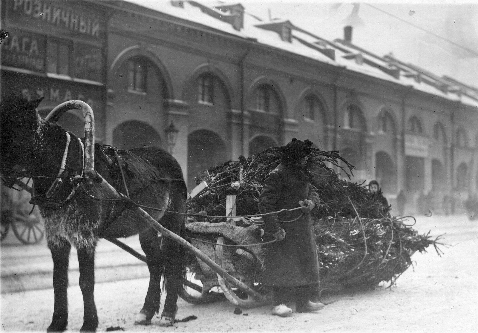 1913. Воз с ёлками у Никольского рынка