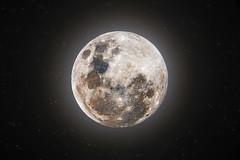 Lua Cheia | Full Moon