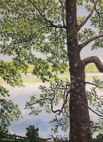 Tree View, 24